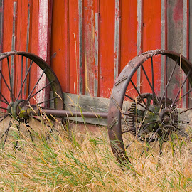 Wheel relic. by Gale Perry - Artistic Objects Antiques