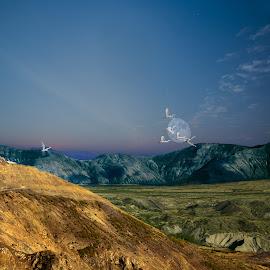 by Jorge Pacheco - Digital Art Places