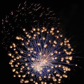 Fiesta Fireworks by Cathy Hood - Abstract Fire & Fireworks