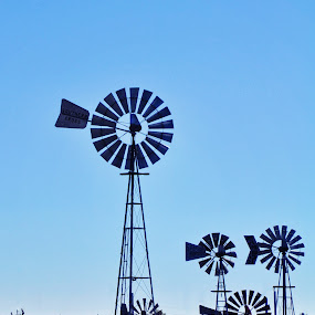 Windmill Hill by Starla Sims - Products & Objects Industrial Objects ( wind, windy, texas, windwmill, windmill )