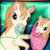 Pony Pregnancy Maternity