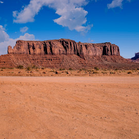 Monument Valley by Janet Aguila Krause - Landscapes Travel ( monument valley )