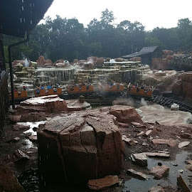 Big Thunder Mountain Railroad in the rain. @waltdisneyworld by Stephen Heinly - Instagram & Mobile Android ( waltdisneyworld, magickingdom )