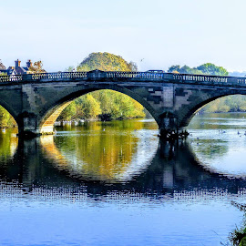 The Bridge At Bewdley In Worcestershire by Ian Popple - Buildings & Architecture Bridges & Suspended Structures ( reflection, worcestershire, bridge, river severn, bewdley )
