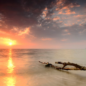 Kelanang's Story -  Dazzle On The Water by Syafiqjay  Sj - Landscapes Waterscapes ( syafiqjay photofibre nikon sunset seascape pantai kelanang cokin )