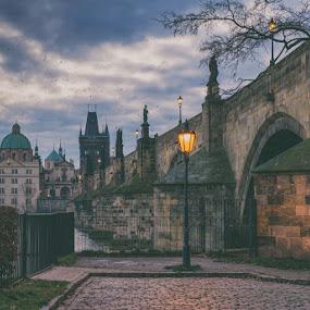 Charles bridge Prague by Robert Grim - City,  Street & Park  Historic Districts ( europe, bridge, morning, praha, prague, historic, city )