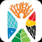 App VISIT CARIBE MAYA APK for Kindle