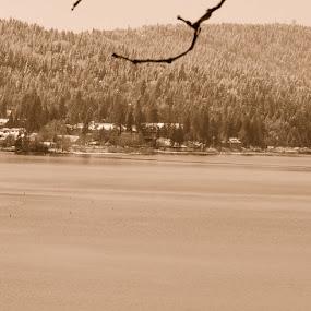Lake Arrowhead Winter 2012 by Steve Keefe - Landscapes Mountains & Hills ( winter, lake arrowhead, steve keefe )