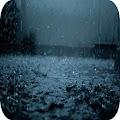 Rain Live Wallpaper APK for Ubuntu