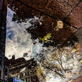 urban autumn puddle view by Mauri Walton - Uncategorized All Uncategorized