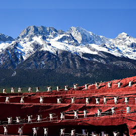 Lijiang outdoor theater by Xiufen Gu - People Musicians & Entertainers ( naxi, lijiang )