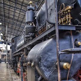 by Jose Figueiredo - Transportation Trains ( italia, train, museum )