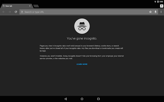 Chrome Canary (nestabilen) APK screenshot thumbnail 8