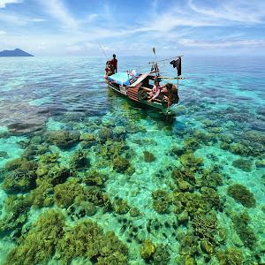 Nirvana of Borneo.jpg