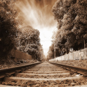The Lines by Sudipta Jana - Transportation Trains ( abstract, sepia, train, line, rail lines,  )
