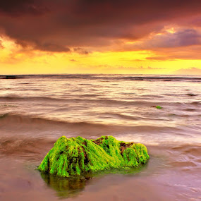 Alone Stone by Dede GreenHolic - Landscapes Waterscapes ( water, waves, cloud, stone, beach, seascape, landscape )
