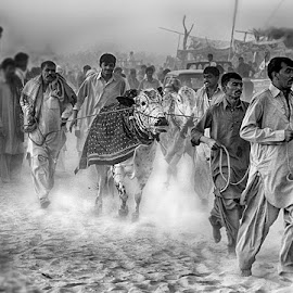 G21 by Abdul Rehman - Black & White Street & Candid