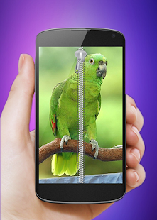 Parrot Screen Locker - screenshot