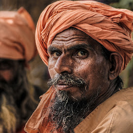 The Sadhus by Ruchit Goswami - People Portraits of Men ( indian, people, sadhu, close up, man, portrait,  )