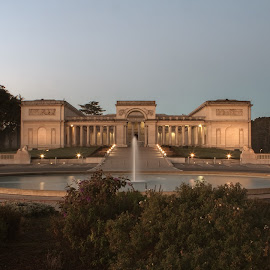 SF Legion of Honor Museum by Pete Bobb - Buildings & Architecture Public & Historical ( exterior, fountain, legion of honor, museum, pre-dawn, san francisco )