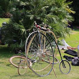 collection by Raf Gentjens - Transportation Bicycles ( bicycles, old, 1800's, wheels, transportation, collection )