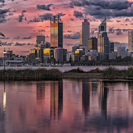 Perth  by Ron McGrechan - City,  Street & Park  Skylines ( palm, perth, sunset, cityscape, river )