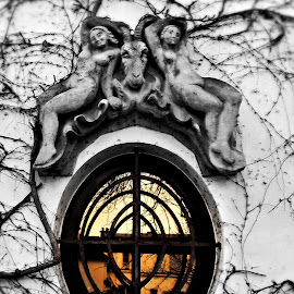 by Ciprian Apetrei - Buildings & Architecture Architectural Detail ( paris, building, selective color, architectural detail, historical )