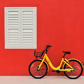 by Koh Chip Whye - Transportation Bicycles (  )