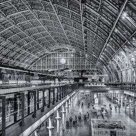 St. Pancras International by Stuart Lilley - Buildings & Architecture Architectural Detail ( structure, black and white, stations, station, architecture )