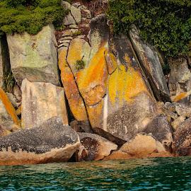 by Johan Koch - Nature Up Close Rock & Stone