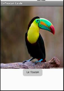 Le Toucan - screenshot