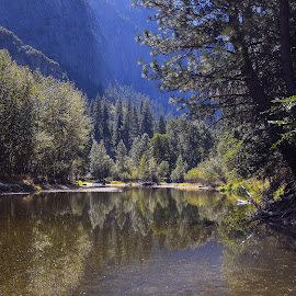 Yosemite National Park by Barry  Stead - Landscapes Waterscapes