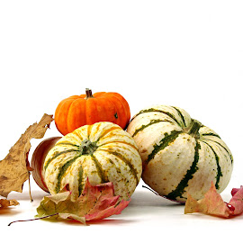 Fall and Pumpkins by Dipali S - Food & Drink Fruits & Vegetables ( orange, seasonal, wood, symbol, colorful, pumpkin, decoration, wallpaper, pumpkins, white, thanksgiving, space, leaves, photo, halloween, holiday, wooden, season, autumn, food, background, fall, october, harvest, vegetable, patch )