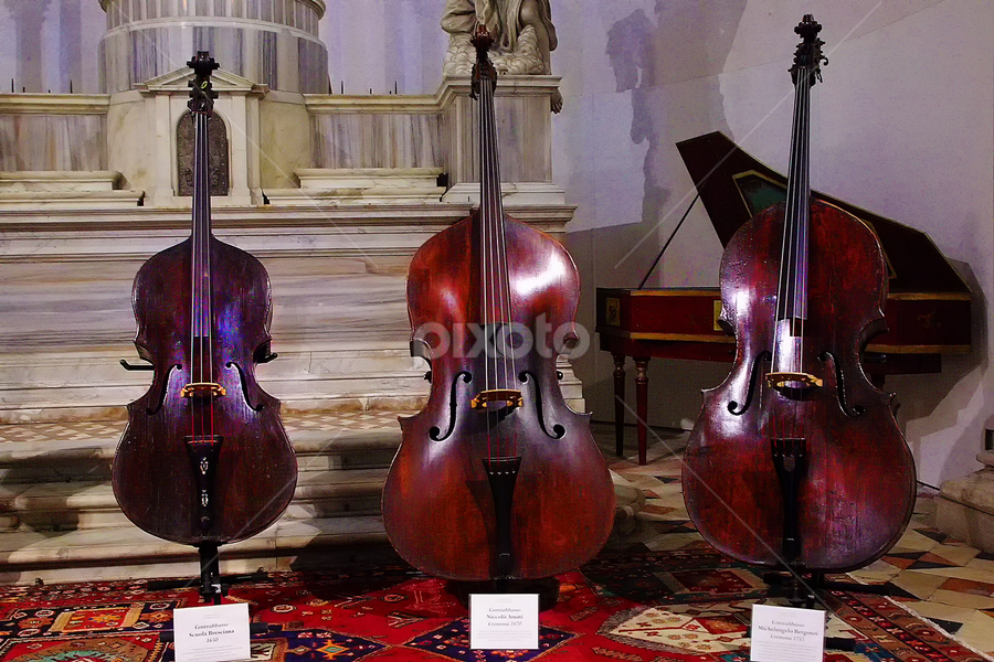 Contrebasses by Gérard CHATENET - Artistic Objects Musical Instruments