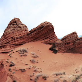 by Vita Perelchtein - Novices Only Landscapes ( sand, explore, old, coyote buttes, desert, cliffs, erosion, waves, layers, canyon, usa, hiking, sky, blue sky, nature, arizona, hike )