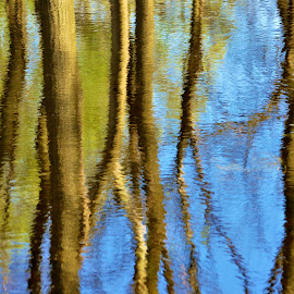 Nature's Watercolor by Viana Santoni-Oliver - Abstract Patterns ( watercolor, sky, nature, outdoor, trees, reflections, lake, outside )