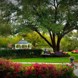 Park by Brenda Shoemake - City,  Street & Park  Historic Districts