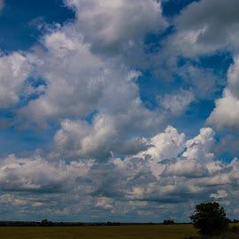 Storms rolling in by Greg Reeves - Landscapes Weather ( clouds, prairies, prairie clouds, storm clouds, storms, prairie,  )