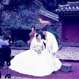 Korean Bridal Couple by Dennis  Ng - Wedding Bride & Groom (  )
