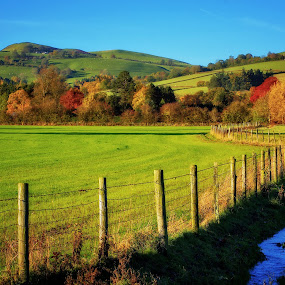 Autumn in Wales by Tomasz Marciniak - Landscapes Prairies, Meadows & Fields ( uk, autumn, wales,  )