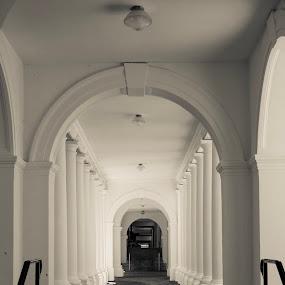 UVA Passageway  by Bob Stafford - Buildings & Architecture Public & Historical