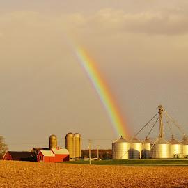 Farmer's Delight by Celia Schulz-Photography - Landscapes Weather ( rual wisconsin, double rainbow, racine county, farms, rainbow )