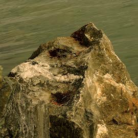 Rock on water by Alf Winnaess - Uncategorized All Uncategorized