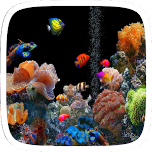 Aquarium Live Wallpaper Theme