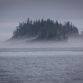 The Mist Buring Off by Mary Malinconico - Landscapes Waterscapes ( may 2015, acadia national park,  )