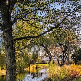 Egerton park bexhill by Sam Kirimli - Digital Art Places