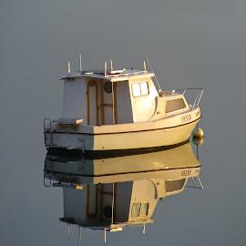 Little Boat by Kathryn Potempski - Transportation Boats ( calm, reflection, tasmania, nature, australia, still, beach, landscape )