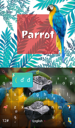 Colorful Parrot Keyboard Theme - screenshot