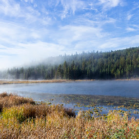 Davis Lake Mist by Devin Rieger - Landscapes Waterscapes ( clouds, water, reflection, sky, nature, canada, fog, lake, sunrise, mist )