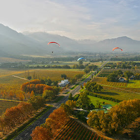 Franshhoek valley South Africa by Anthony Allen - Landscapes Mountains & Hills ( mountains, powered paragliders, autumn, vineyards, autumn clouds, road, fields )